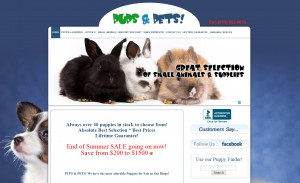 pet store web design